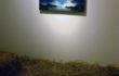 """Luca Gastaldo, """"Brividi"""" 80×80 bitume e colorante su tela 2012"""