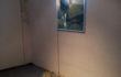 """Maria Rebecca Ballestra – """"Dreaming Shanghai"""" – stampa su schermo al led e piume colorate –  cm. 100×70 – 2012"""