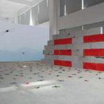Maria Rebecca Ballestra, I AM BECAUSE YOU ARE, 2012 – mattoni, vernice, libellule colorate e video installazione misure ambientali