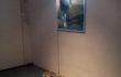 Maria Rebecca Ballestra, STRUZZO, 2012 – stampa su schermo ai led e piume colorate – cm. 70×100