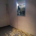 Maria Rebecca Ballestra, STRUZZO, 2012 - stampa su schermo ai led e piume colorate - cm. 70x100