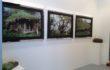 Green Minds – Arte Fiera 2014