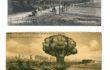 L'orMa, Untitled_40x30cm_intervento manuale su fotografie antica, colori acrilici, oli