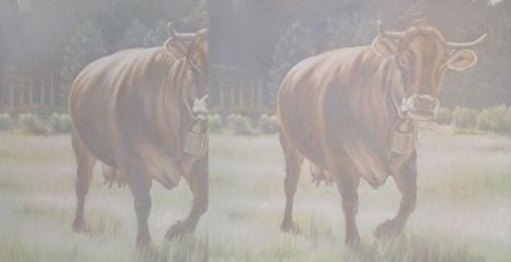 ORMA, cows, 100x195cm