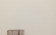 28_L'orMa_15x10cm_intervento manuale su foglia di Hevea brasiliensis_2015