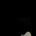 6_L'orMa_40x30cm_intervento manuale su foglia di gelso_2015