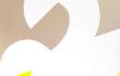 Cigno Reale (acrilico su tela, 100X100, 2015)